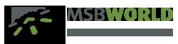 MSB World strony www sklepy internetowe pozycjonowanie